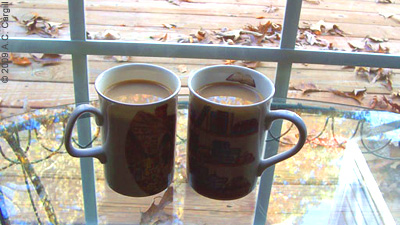 Tea on Back Deck