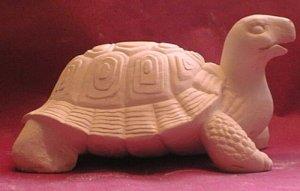 Tortoise Model B