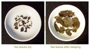 English Tea Store Ti Kuan Yin Iron Goddess Oolong
