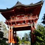 Japanese Loose Teas Sampler