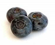 Blueberries are ready. Got whipped cream?