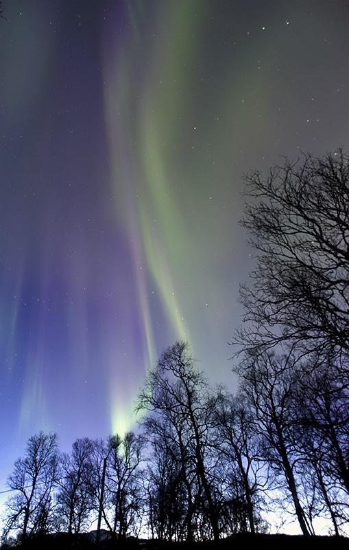 Aurora Borealis - Credit: Fredrik Broms