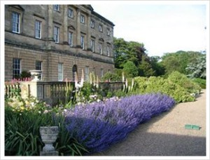 Howick Hall Gardens - Take a tour and then have a spot of tea in the tea house
