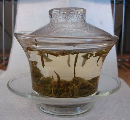 White Darjeeling tea steeping in a glass gaiwan