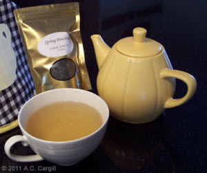 My buddy Little Yellow Teapot steeped up some Spring Pouchong for our rant session! (Photo source: A.C. Cargill, all rights reserved)
