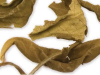 Yellow Tea from Davidson's Tea (Photo source: stock image)