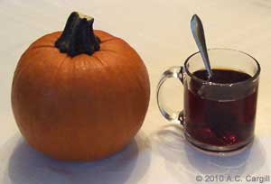 Contemplating the pie within that pumpkin while sipping a nice cuppa Assam. (Photo source: A.C. Cargill, all rights reserved)