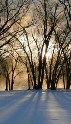 Winter Solstice, Dec. 21st, presages longer days ahead. (Photo source: stock image)
