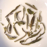 Dry leaves of a Hawaiian green tea (Photo source: A.C. Cargill, all rights reserved)