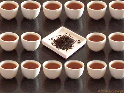 Moderation in tea? Perish the thought! (Photo source: A.C. Cargill, all rights reserved)