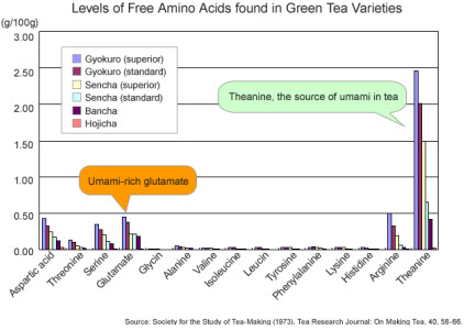 Umami in green tea (Photo source: screen capture from site)
