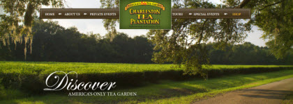 The Charleston Tea Plantation, now a popular tourist destination. (Photo source: screen capture from the site)