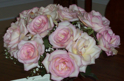 Roses from hubby (Photo source: A.C. Cargill, all rights reserved)