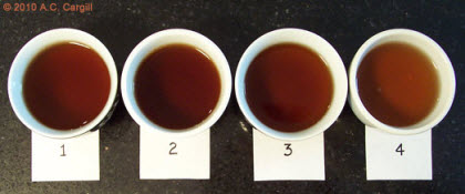 This tale requires four steepings of Young Pu-erh (Photo source: A.C. Cargill, all rights reserved)