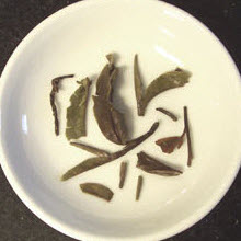 Not all Darjeelings have that varied color appearance. This is a white Darjeeling tea. (Photo source: A.C. Cargill, all rights reserved)