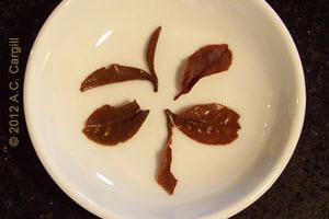 Tea_Blog_TT-CastletonMoonlight2F2012B2a