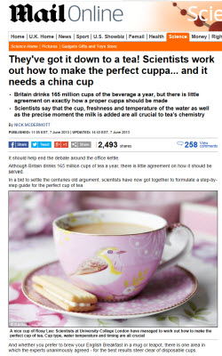 The Perfect Cuppa? (screen capture from site)