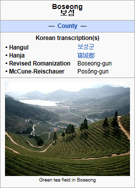 Boseong County, Korea (screen capture from site)