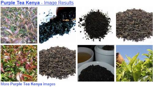 Purple tea of Kenya (Yahoo! Images)