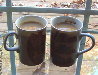 Sometimes it takes 2 cuppas in the morning! (Photo by A.C. Cargill, all rights reserved)