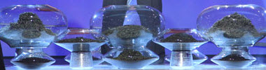"""Tea awaits its fate on """"Iron Chef"""" (Screen capture from site)"""