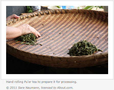 Rolling Pu'er Tea (Second Step in Making Pu'er Tea) – doing by hand is arduous and takes about 15 minutes per handful, so most of this step is now done by machine. (Screen capture from site)