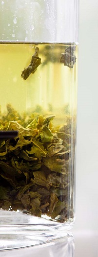 Cold Brew Tie Guan Yin (Photographer: Brodie Standen, Image Courtesy: Queensland Art Gallery | Gallery of Modern Art)