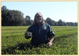 Bill Hall of Charleston Tea Plantation