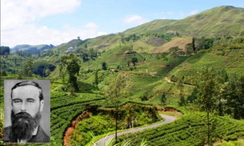Ceylon Tea Garden and James Taylor