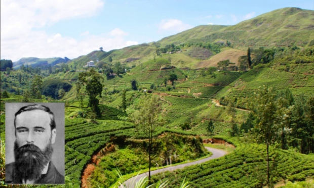 Ceylon Tea Garden and James Taylor
