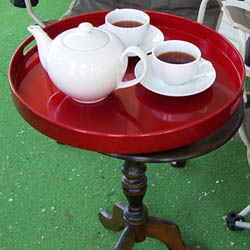 Braving the outdoors for tea time! (Photo by A.C. Cargill, all rights reserved)
