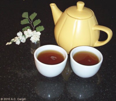 Tea – it just tastes great! (Photo by A.C. Cargill, all rights reserved)
