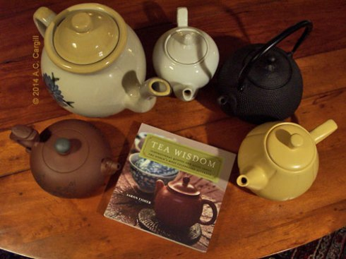 That little book is a teapot magnet! (Photo by A.C. Cargill, all rights reserved)