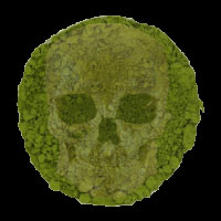 Satisfy those ghouls at tea time with this pea soup green matcha! (ETS image)