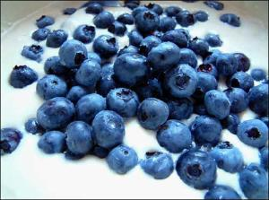 blueberry-sweet-fruit