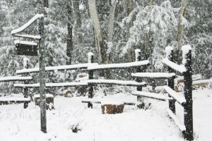 Snowlined fence