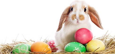 Happy-Easter-2016-2017-2018-2019-20202.jpg